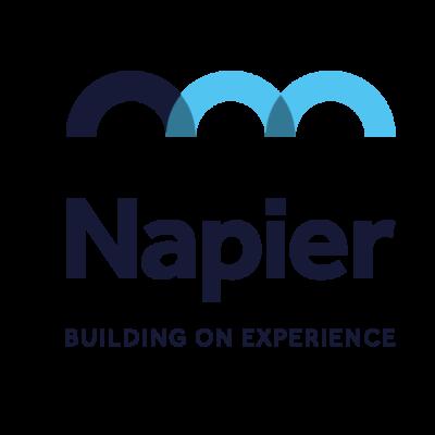 Napier Management Ltd Logo 2020