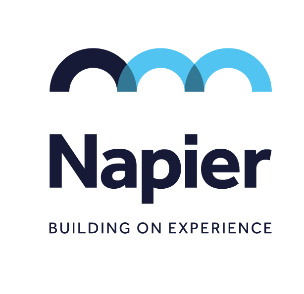 Napier Management Ltd Logo 2020